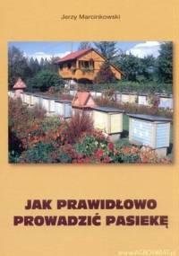 Jak prawidłowo prowadzić pasiekę - Jerzy Marcinkowski
