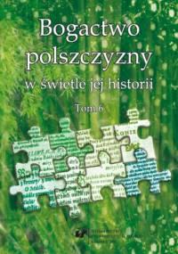 Bogactwo polszczyzny w świetle jej historii. T. 6 - Wioletta Wilczek, Joanna Przyklenk red.