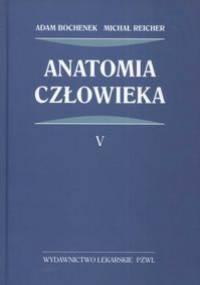 Anatomia człowieka t.5 - Adam Bochenek, Michał Reicher