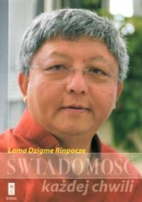 Świadomość każdej chwili - Rinpocze Dzigme
