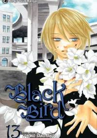 Black Bird, vol. 13 - Kanoko Sakurakouji