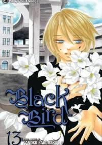 Black Bird, vol. 13 - Kanoko Sakurakouji