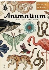 Animalium. Muzeum Zwierząt - Jenny Broom