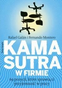 Kamasutra w firmie. 69 pozycji, które sprawią ci przyjemność w pracy - Rafael Galán, Fernando Montero