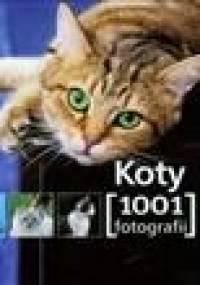 Koty. 1001 fotografii - praca zbiorowa