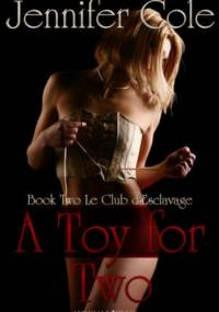 A Toy For Two - Jennifer Cole