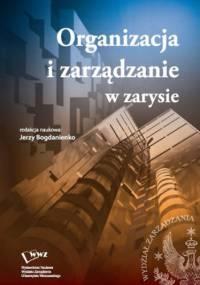 Organizacja i zarządzanie w zarysie - Jerzy Bogdanienko